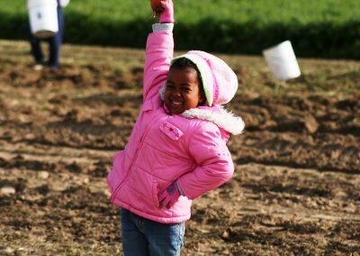 Carrott Gleaning 10-10-09 035